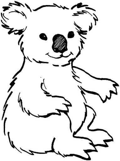 Colorear Dibujo Koala