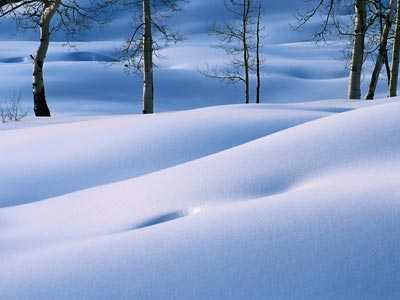 paisaje nevado de invierno
