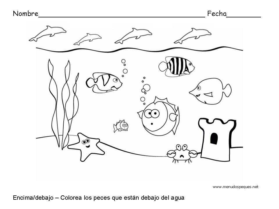 Encima y debajo, peces - Fichas de conceptos básicos